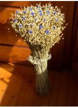 Flachsgarbe mit Kornblumen